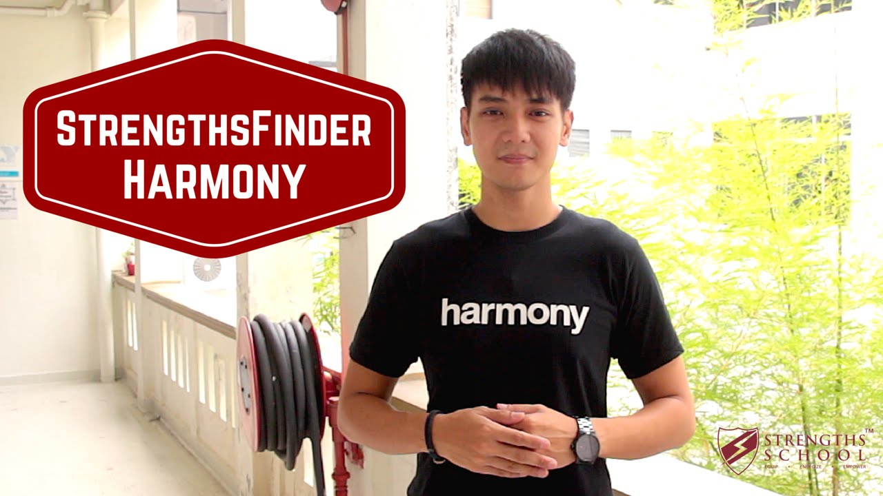 StrengthsFinder 'Harmony' Talent Theme