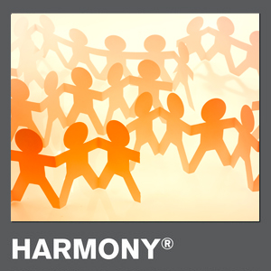Growing the StrengthsFinder 'Harmony' Talent Theme